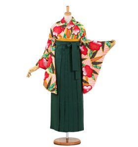 卒業袴 No.055-0482