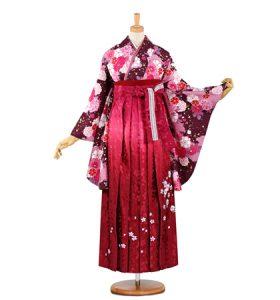 卒業袴 No.055-0484